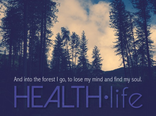 hl-graphics-800x700px-forest